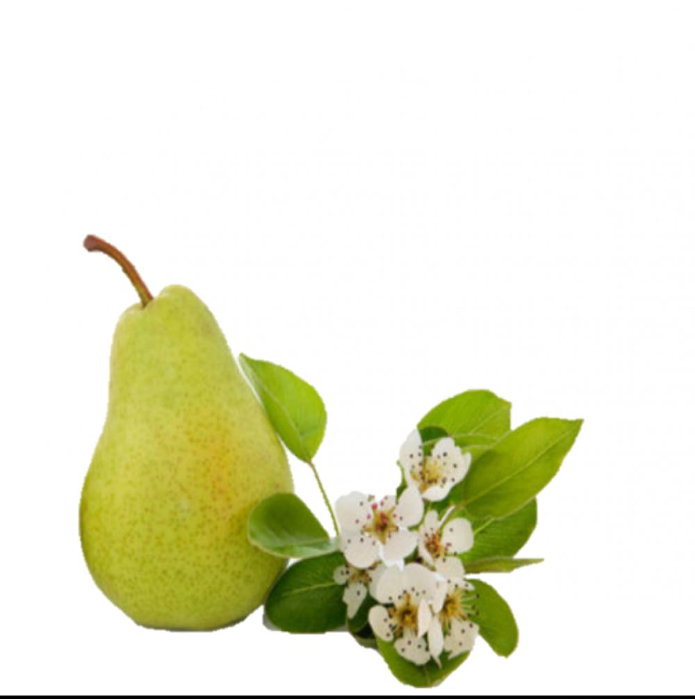ambientador ecologico perfume de hogar english pear and freesia