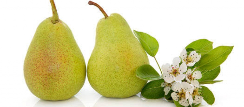 ambientador a granel english pear & freesia